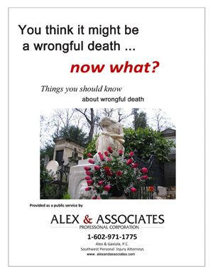 Wrongful Death E-book